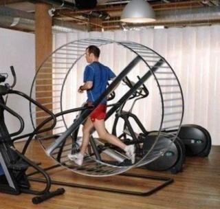Gerbil Wheel