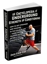 EncyclopediaOfUndergroundStrengthAndConditioning